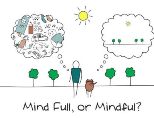 Mindfulness or mind fullness?